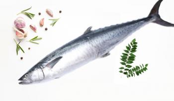 King Fish (Curry Cut) / Aiykoora / Anjal / سمك كنعد  (may include Skin, Head& Tail)