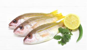 Naiser / Mullet Fish / سمك نيسر