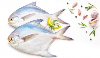 White Pomfret (Size- 200g+) / Vella Avoli / Maanji / بومفريت