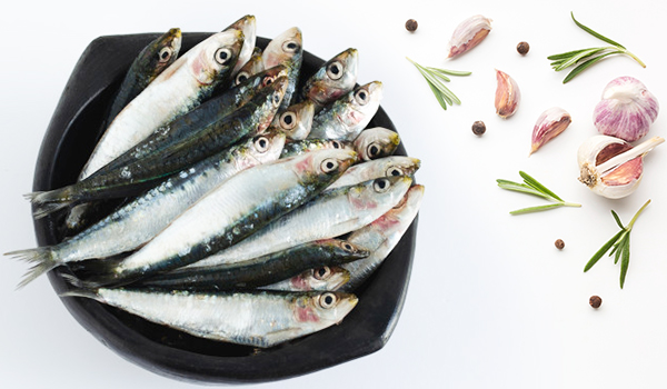 Sardines / Matthi / Kavalai / سَردين